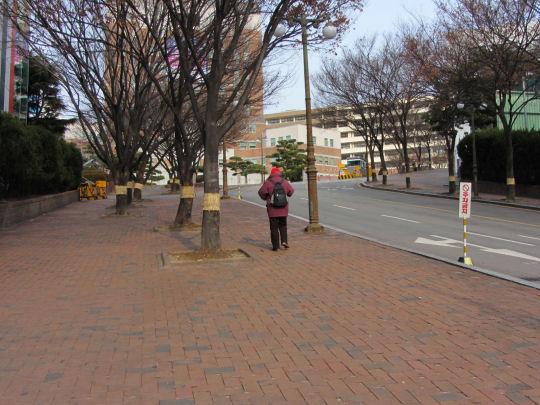 釜山慶星大學校園