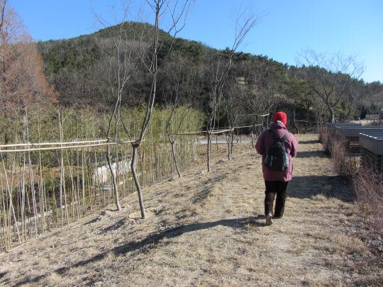捷徑走往良洞民俗村