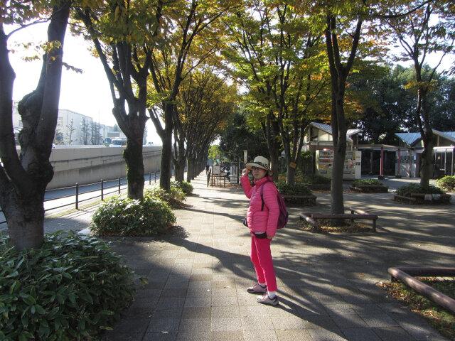 京都梅小路公園.大宮入口