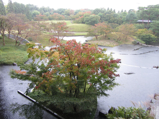 京都梅小路公園 朱雀の庭秋天紅葉景色