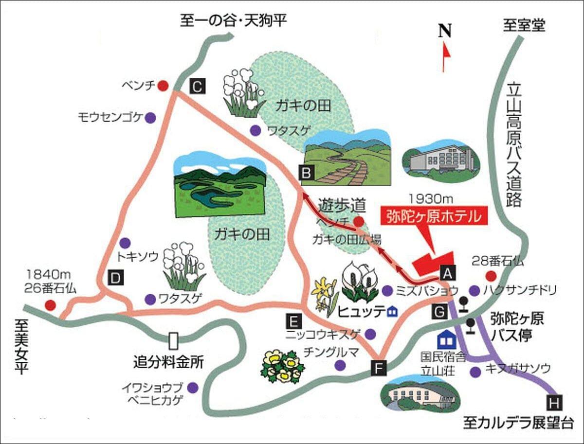 彌陀原健行木步道地圖
