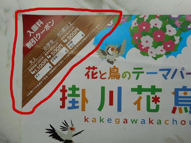 掛川花鳥園宣傳單張及優惠卷