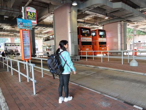 愉景新城A31機場巴士