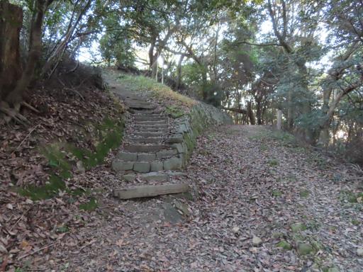 登上 上山公園 山頂展望台