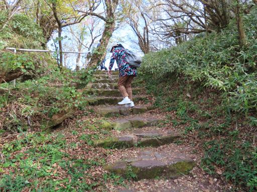 登上妙見岳山頂、妙見神社