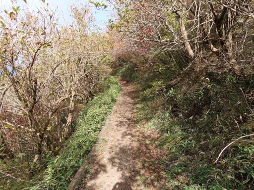 妙見岳 - 普賢岳 登山路