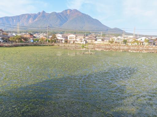 島原市 白土湖