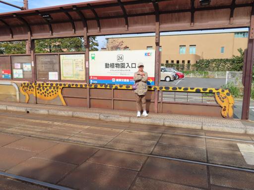 熊本路面電車‧  動植物園入口站