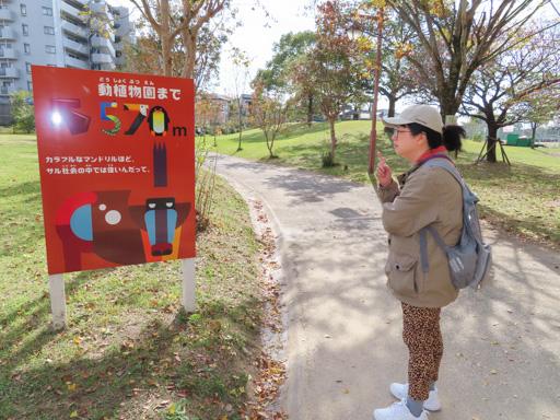動植物園入口駅 步行到  熊本市動植物園