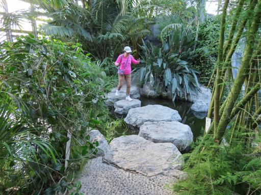 熊本市動植物園 植物園區