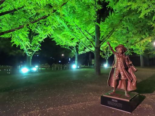 熊本縣廳夜銀杏景色