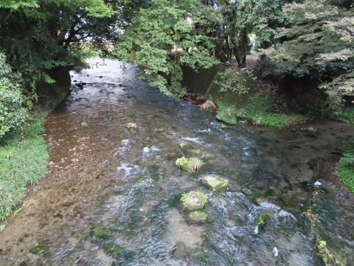 水前寺江津湖公園‧出水地區