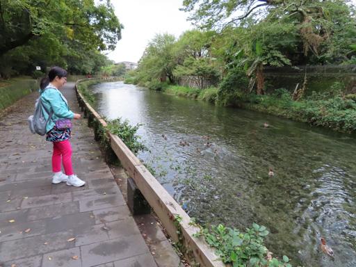水前寺江津湖公園‧出水地區‧加勢川散策園路