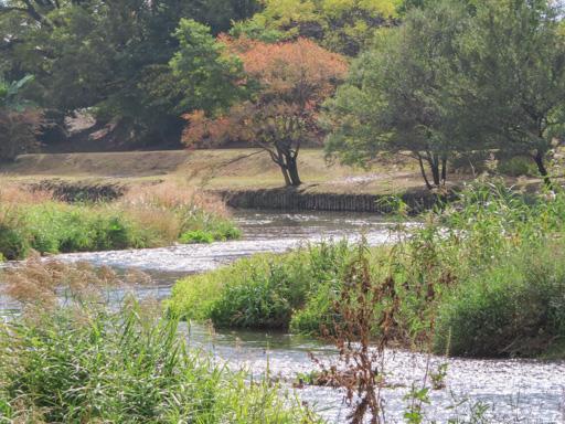 水前寺江津湖公園‧ 上江津地區