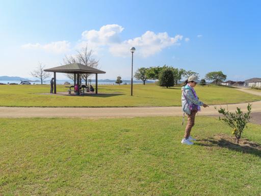 熊本‧三角港綠地公園