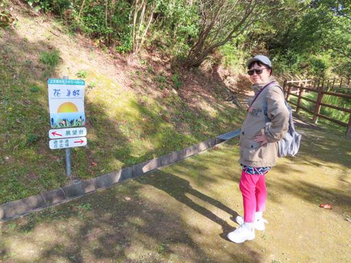 上天草 花海好公園遊步道