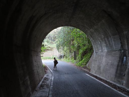 十三佛公園步行往妙見浦