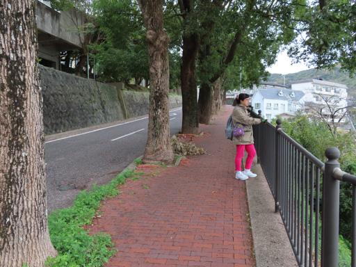 長崎市 六角道 眺望長崎市