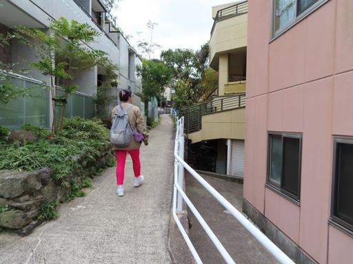 長崎大學步行往心田庵