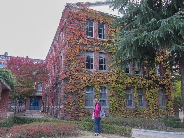 啟明大學漂亮校園