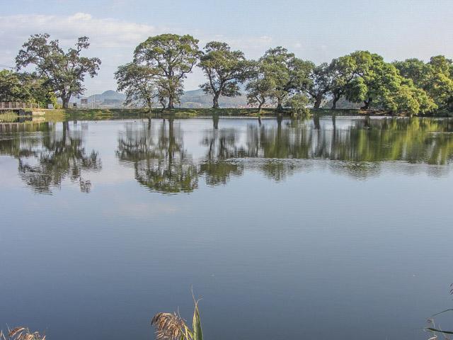 風景漂亮的盤谷池