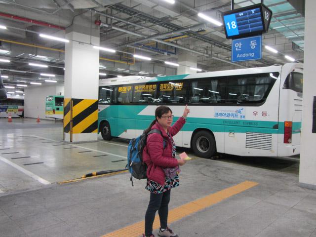 韓國東大邱客運站往安東 (안동 Andong) 高速巴士乘車站