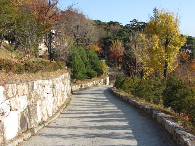韓國榮州 浮石寺 秋天 黃銀杏、紅葉漂亮景色