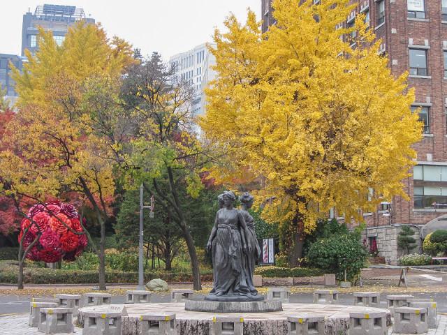 首爾德壽宫石牆路 秋天紅葉、黃銀杏景色