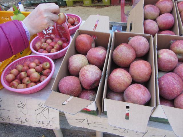 韓國榮州浮石寺登山口步道 攤販 蘋果