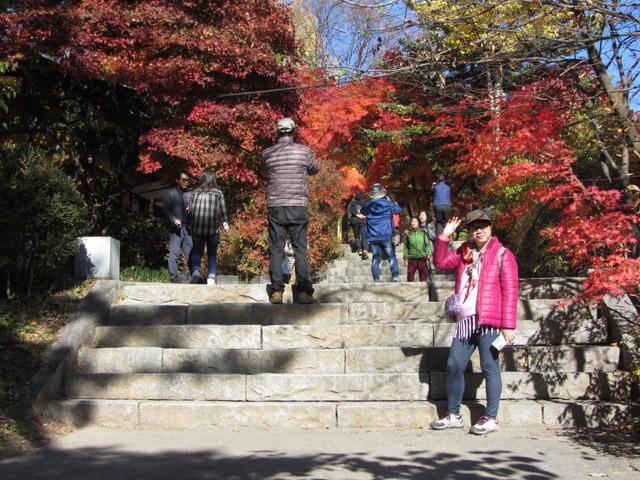 韓國榮州浮石寺登山口步道 紅葉