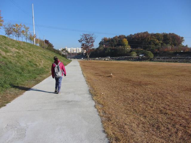 韓國榮州 西川畔公園