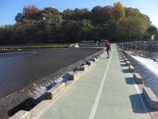 韓國榮州西川 堤堰行人步道