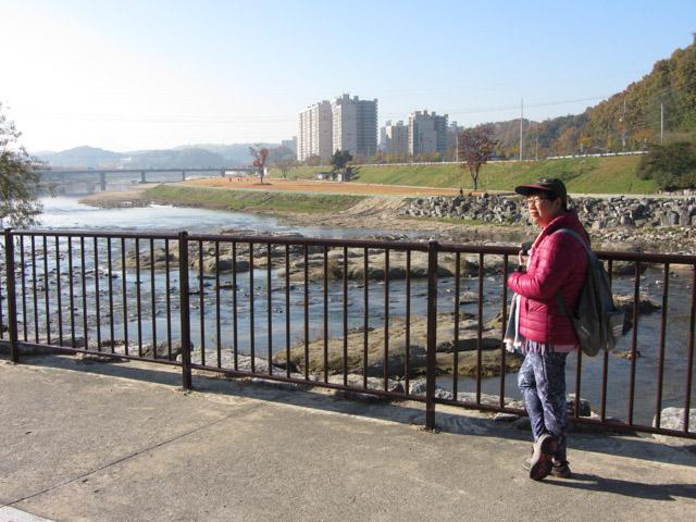 韓國榮州西川左岸