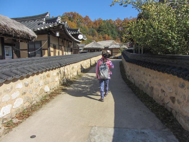 韓國榮州 水島村 (무섬마을 Yeongju Museom Village)