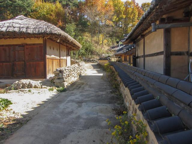 韓國榮州 水島村 秋天景色