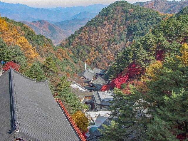 韓國丹陽 小白山谷中的 救仁寺 秋天紅葉景色