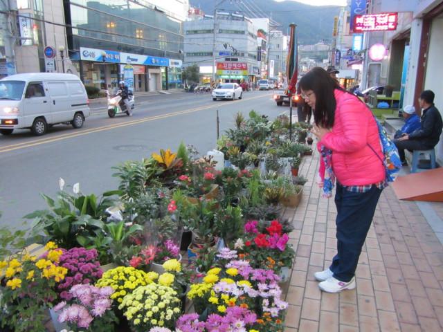 korea-southern-6098