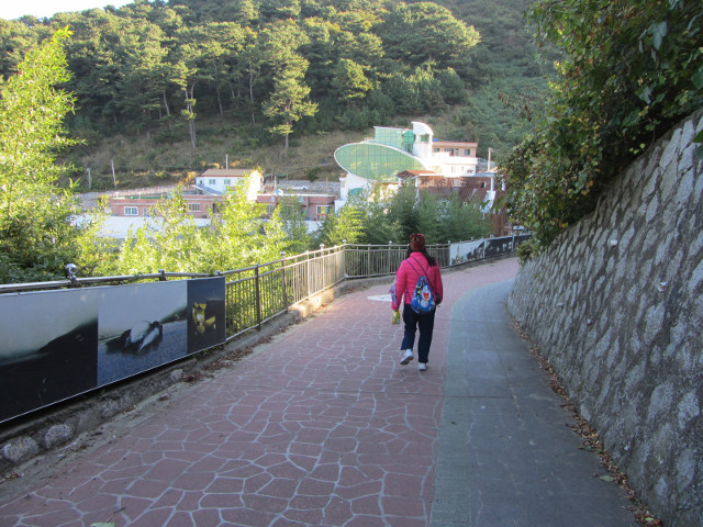 korea-southern-6172
