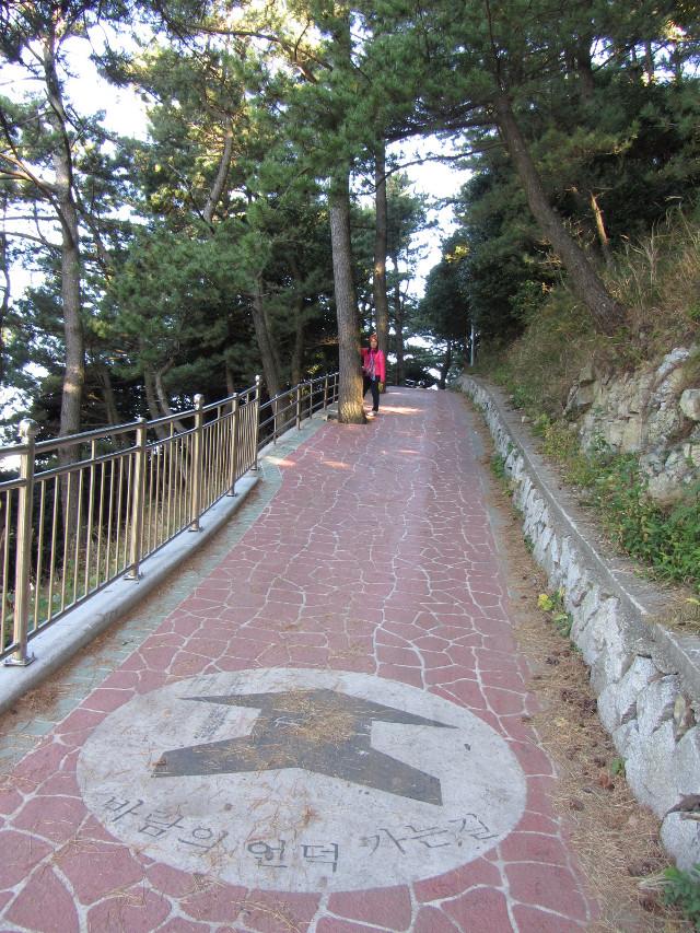 korea-southern-6185