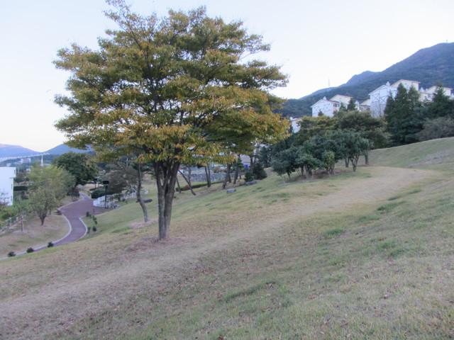 korea-southern-6484