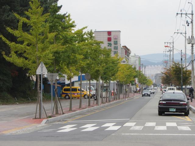 korea-southern-6525