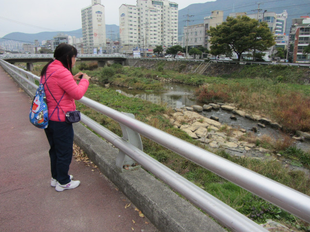 korea-southern-6548