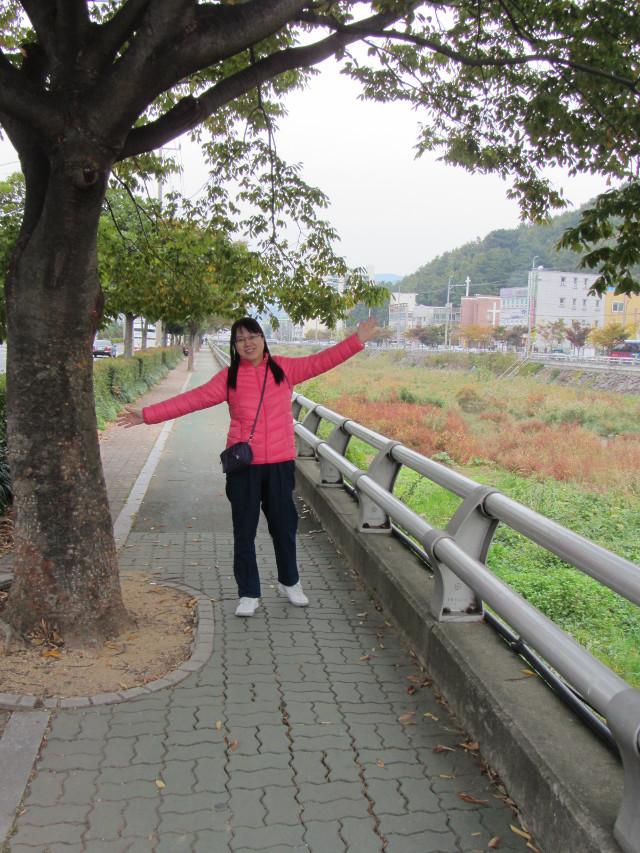 korea-southern-6559