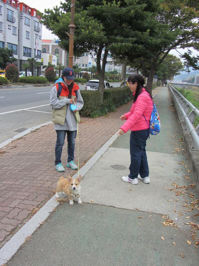 korea-southern-6561