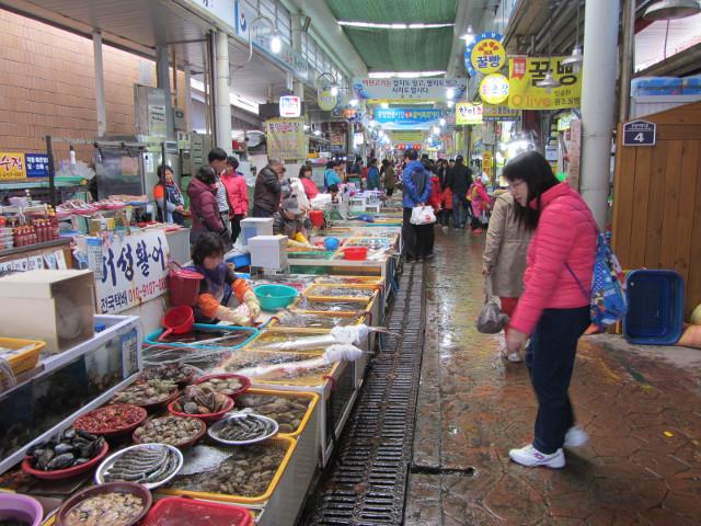 korea-southern-6622