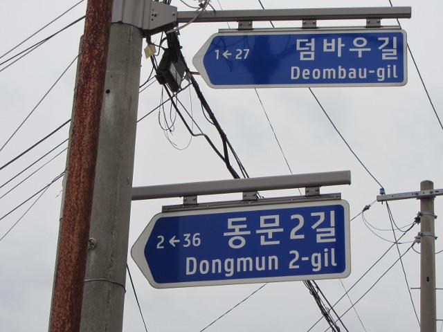 korea-southern-6715