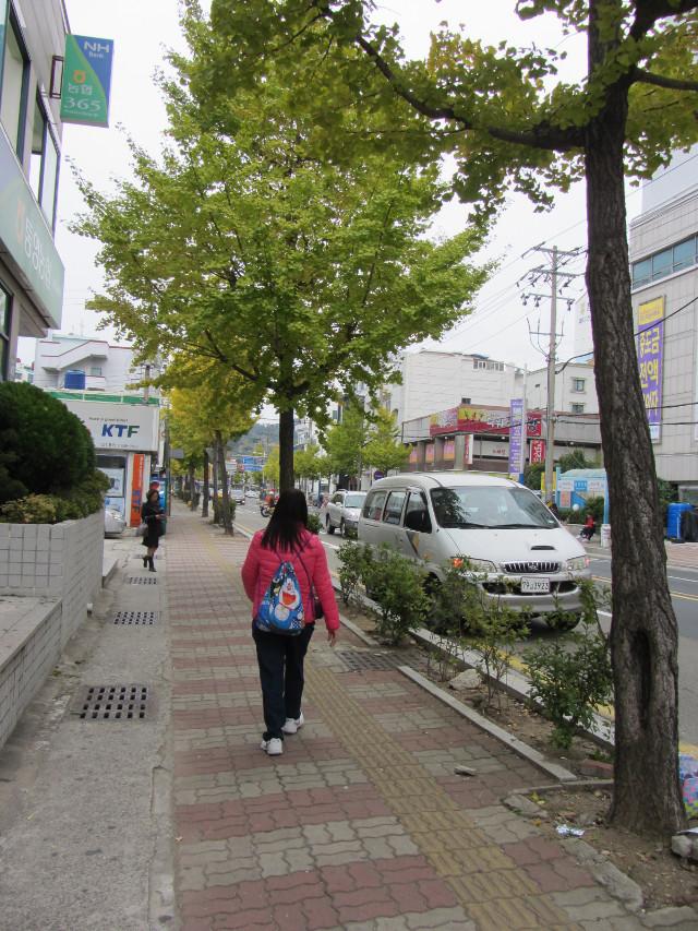 korea-southern-6729