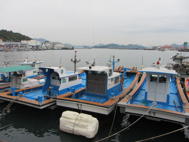 korea-southern-6752