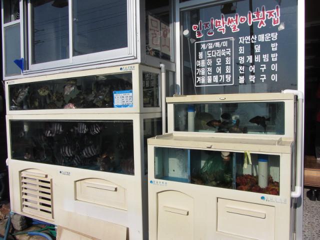 korea-southern-6838