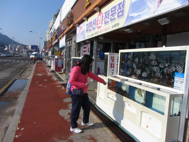 korea-southern-6840